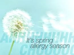 Allergy Support at New Leaf Natural Therapies